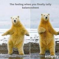 The_Feeling_When_you_finally_tally_reconcile_an_account_(1)_1613069400.jpg